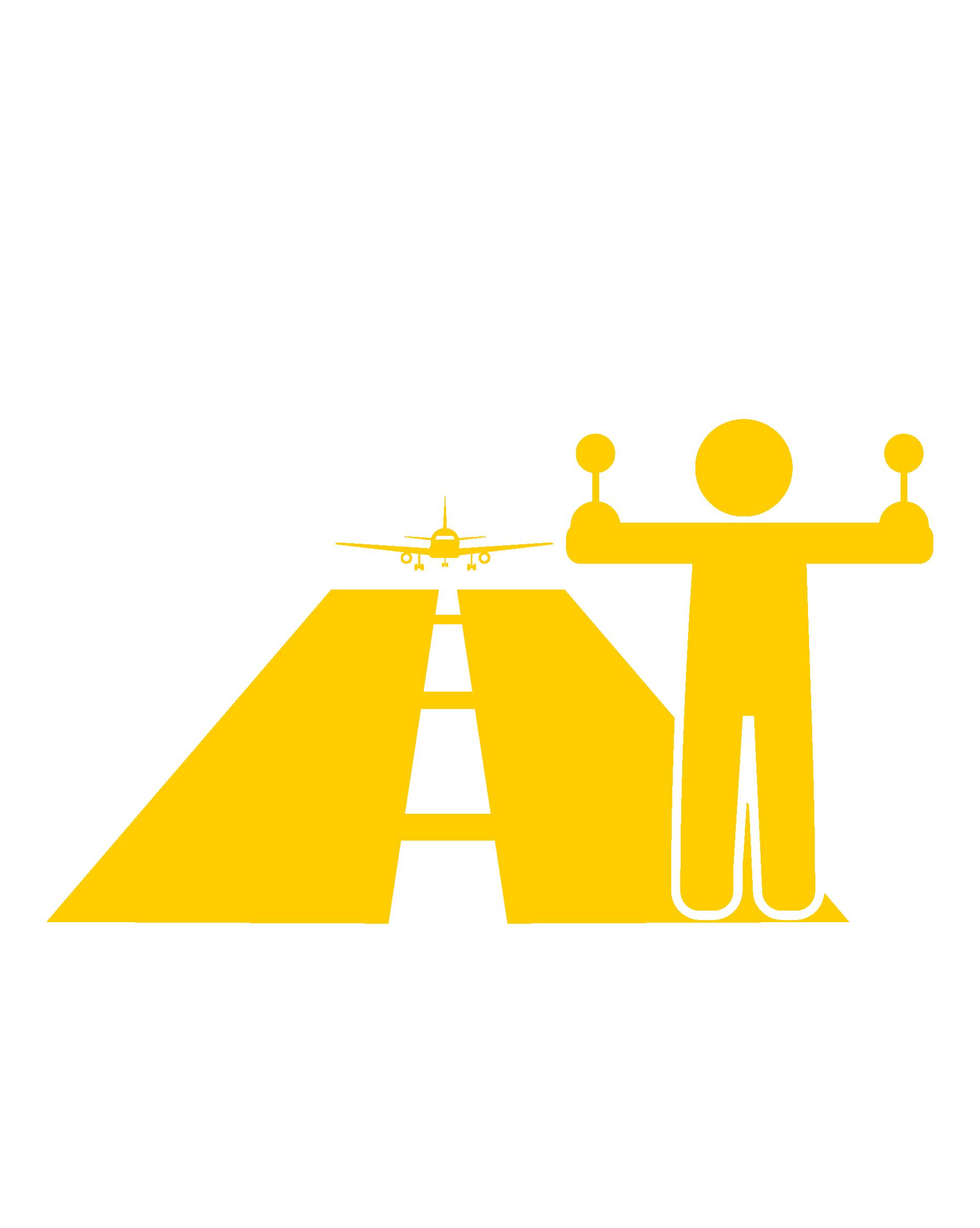 Capacitación en Seguridad de Aviación